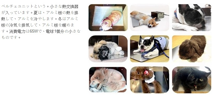 [宋竑廣專欄] 狗狗冷氣設備照片001(source mrt-sensor.com)