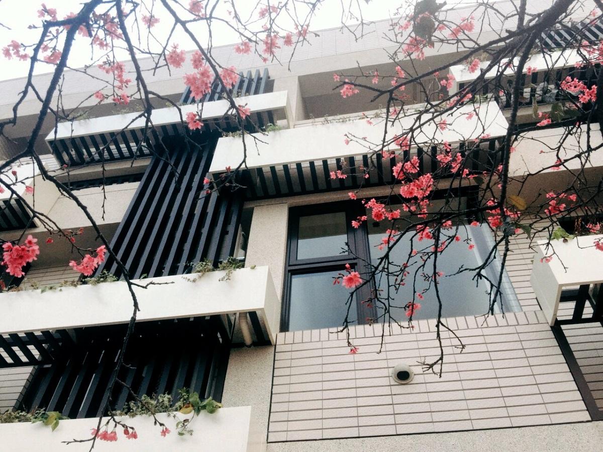 [竹東軟橋] 勝駿建設-種分(透天)2016-03-18 001