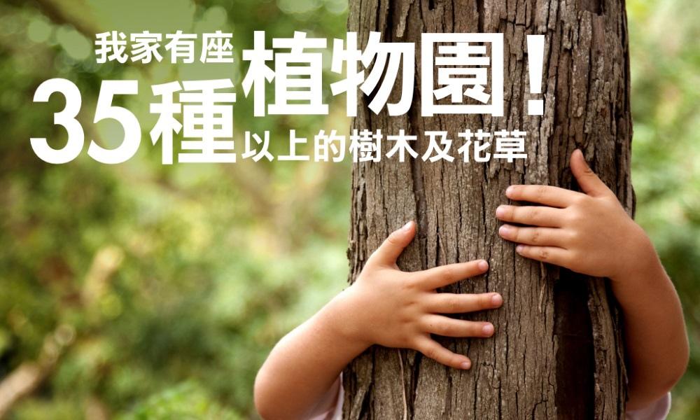 [有獎徵答]哪些植物可以做為中庭植栽?2016-06-14 003.jpeg