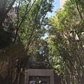 [新竹明湖]遠赫建設+長安建設-長安四季森林(電梯透天)2016-06-15 003.jpg