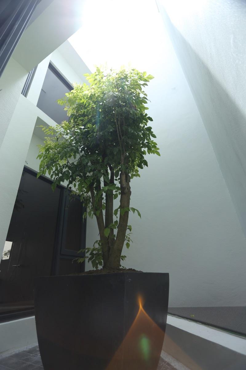 [竹北成壠]有木建設-枝光院(電梯,透天)2016-08-10 004.JPG