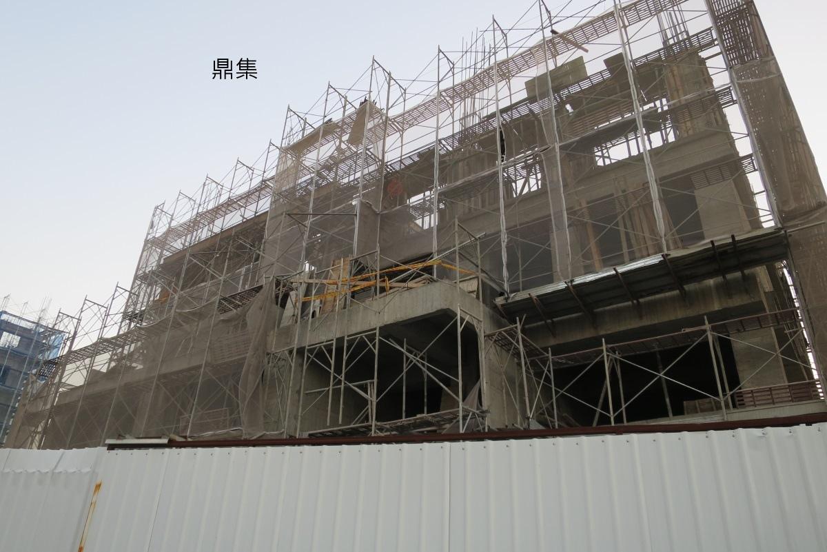 [田野踏查]華興重劃區2016.11 003.JPG