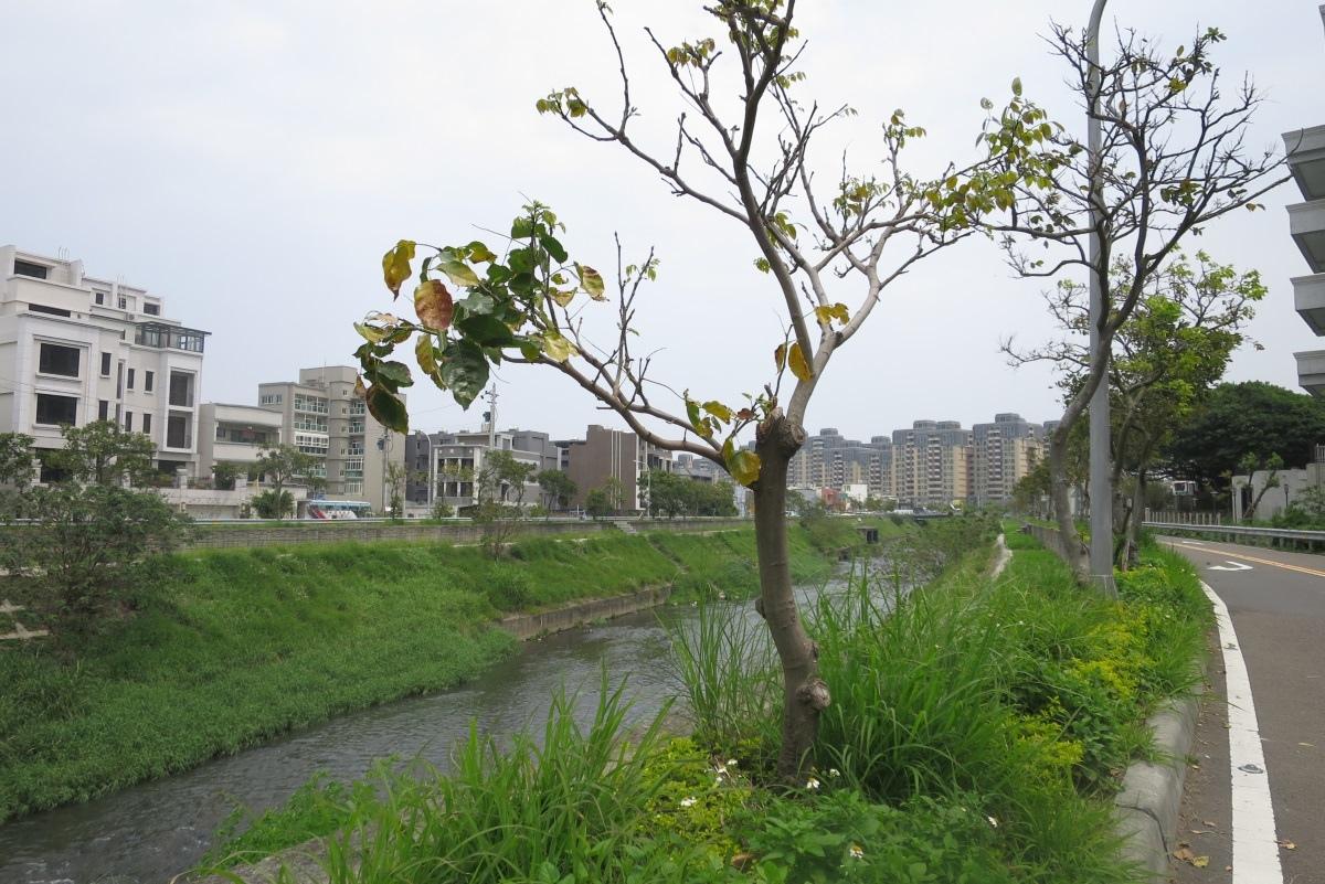 [田野踏查]南勢重劃區 20170424-15.JPG
