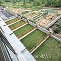 弘新建設「達觀」39 4F後次臥陽台俯瞰室外.JPG