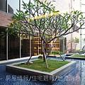 德安開發「德安家康」2010-12-21 58.JPG