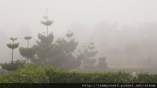13停車場入口的晨霧.jpg