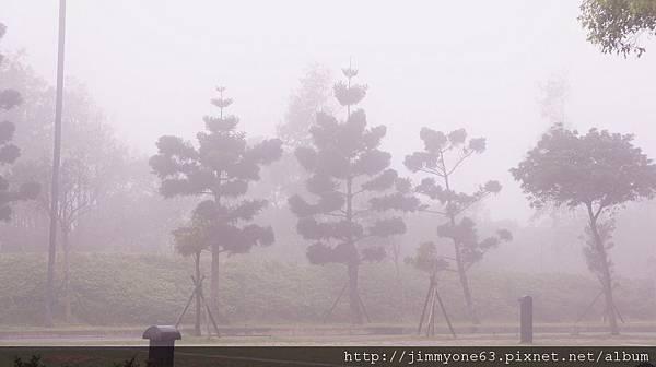 01霧中的車道