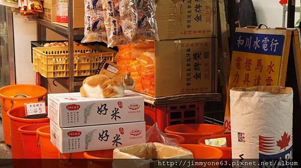 04雜貨店悠閒的貓咪