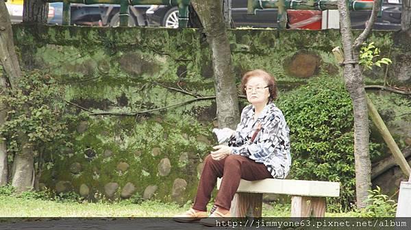 49公園有好多位置可以讓老媽坐