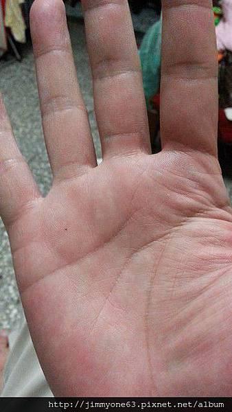 16連續三天麵食,我的手好痛