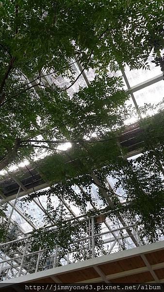 24用餐區的天花板.jpg