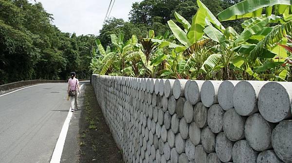 69好有特色的牆,應該是經濟作物.jpg