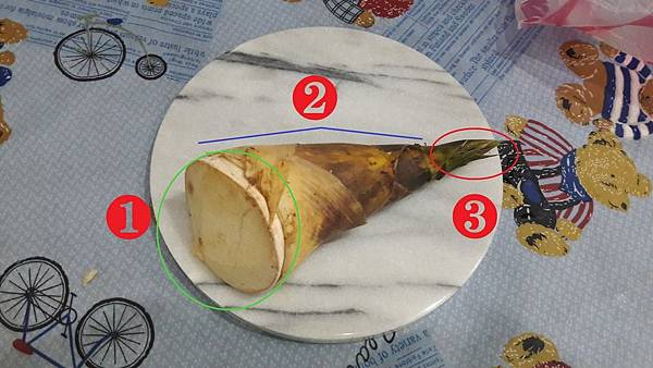 01挑竹筍示意圖.jpg