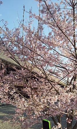 C360_2012-04-04-16-10-31
