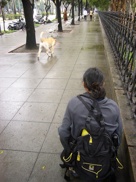 男人與公狗?