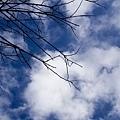 工作照搖滾保姆20091225_55.jpg