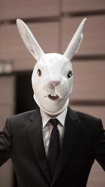 兔.jpg