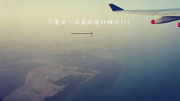 DSC00245_副本