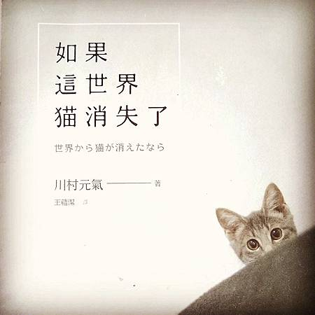 如果這世界 貓消失了