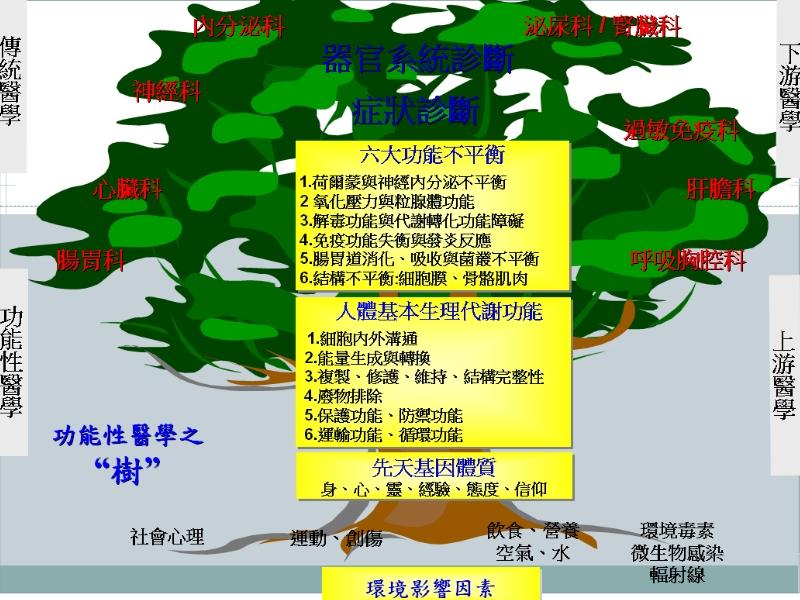 功能性醫學之樹