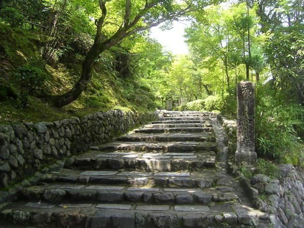 上去也是一間寺院,但我懶得爬了