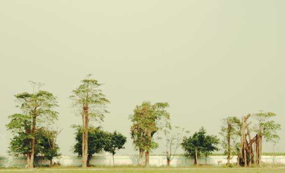"""種樹的男人紀錄片拍攝--嘉義""""過路國小""""校園一景"""