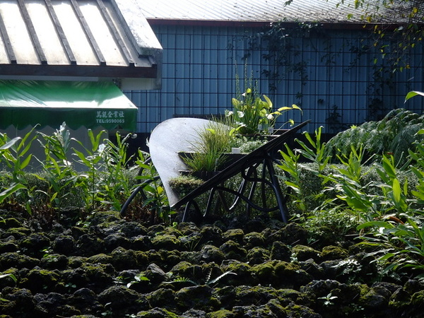 2006_1105宜蘭仁山植物園_新寮瀑布0239.JPG