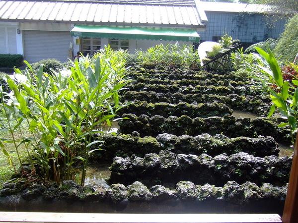 2006_1105宜蘭仁山植物園_新寮瀑布0244.JPG