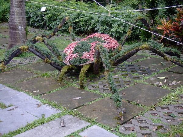 2006_1105宜蘭仁山植物園_新寮瀑布0247.JPG