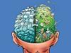 大腦.jpg
