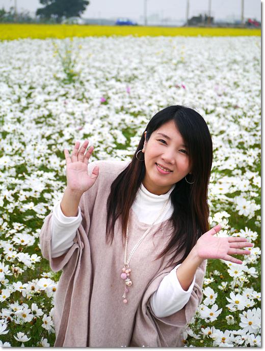 1010114-02莿桐花海-032.JPG