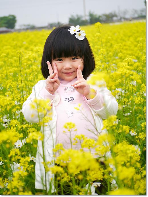 1010114-02莿桐花海-038.JPG