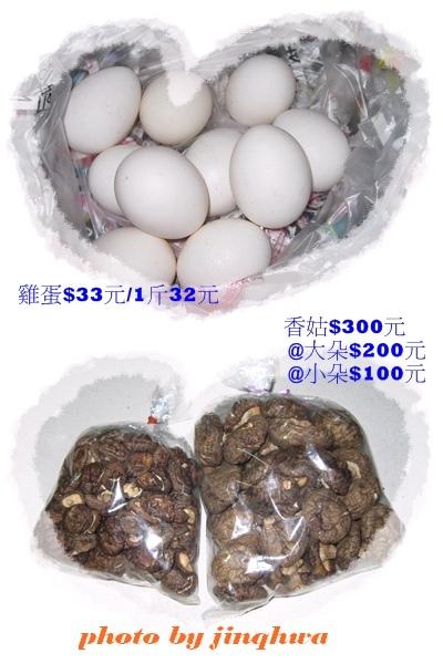 2009-08買菜記-香菇.jpg