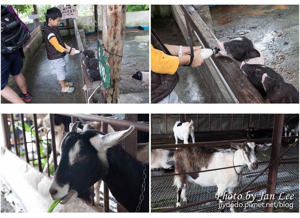 20121028 宜農牧場-003 拷貝拷貝