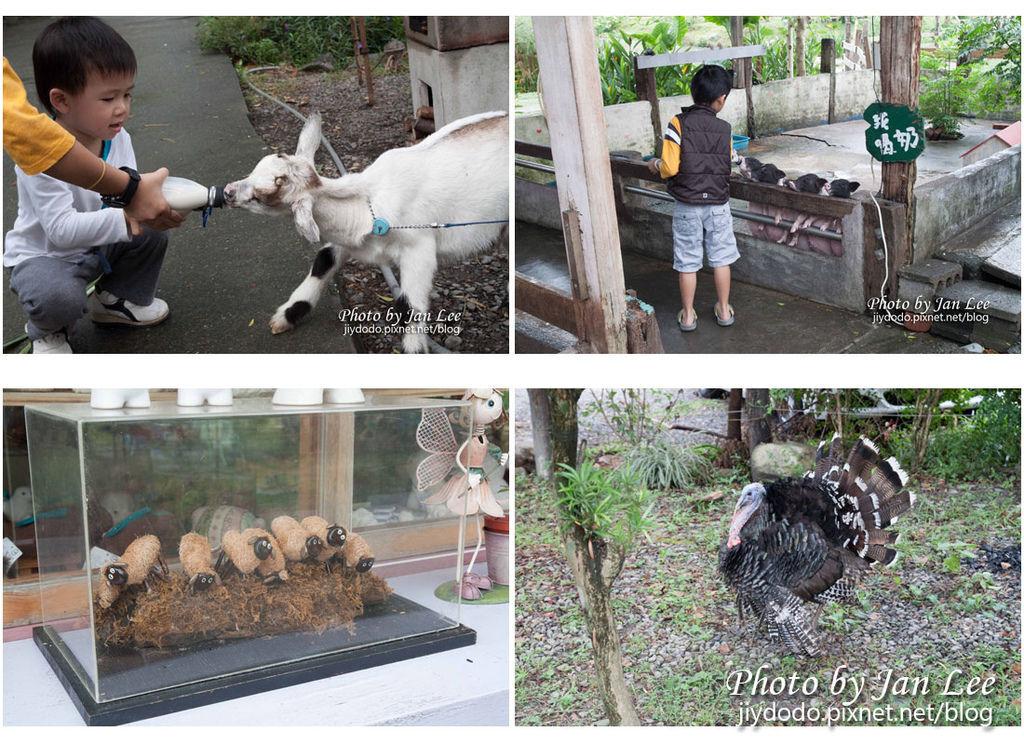 20121028 宜農牧場-002 拷貝拷貝