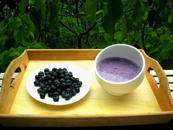 有機藍莓優酪乳