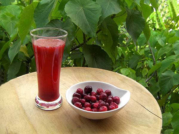 有機小紅梅汁