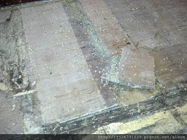 拆木地板-11112802-白蟻窩