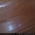 *2011丈量*多年實木地板嚴重變型+百蟻大軍再次來襲IMAG2801.jpg