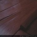 *2011丈量*多年實木地板嚴重變型+百蟻大軍再次來襲IMAG2802.jpg
