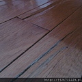 *2011丈量*多年實木地板嚴重變型+百蟻大軍再次來襲IMAG2803.jpg