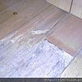 *2011丈量*多年實木地板嚴重變型+百蟻大軍再次來襲IMAG2807.jpg