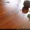 新拍立扣-紅檀香3-超耐磨木地板/強化木地板
