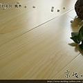 新拍立扣-楓木1-超耐磨木地板/強化木地板