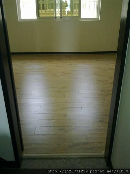 20110831187里斯本橡木.jpg