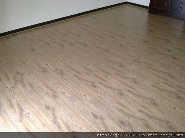 20110831193里斯本橡木.jpg