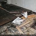 P1100028拆除潮濕發黑舊木地板.JPG