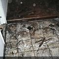 P1100029拆除潮濕發黑舊木地板.JPG