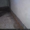 拆金檀實木長白蟻地板-地面潮濕已拆除蟻窩的痕跡.JPG