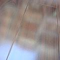 鋼琴面拍立扣/鋼琴烤漆-胡桃7-超耐磨木地板/強化木地板